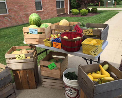 Moble Farm Market Fresh Fruit Vegetables